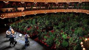 Las plantas ocupan el espacio de los espectadores en el Liceu, en el primer espectáculo en la salatras la crisis del covid-19.