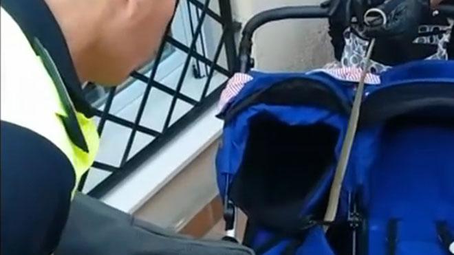 Encontrada una culebra escondida en el carrito de un bebé.