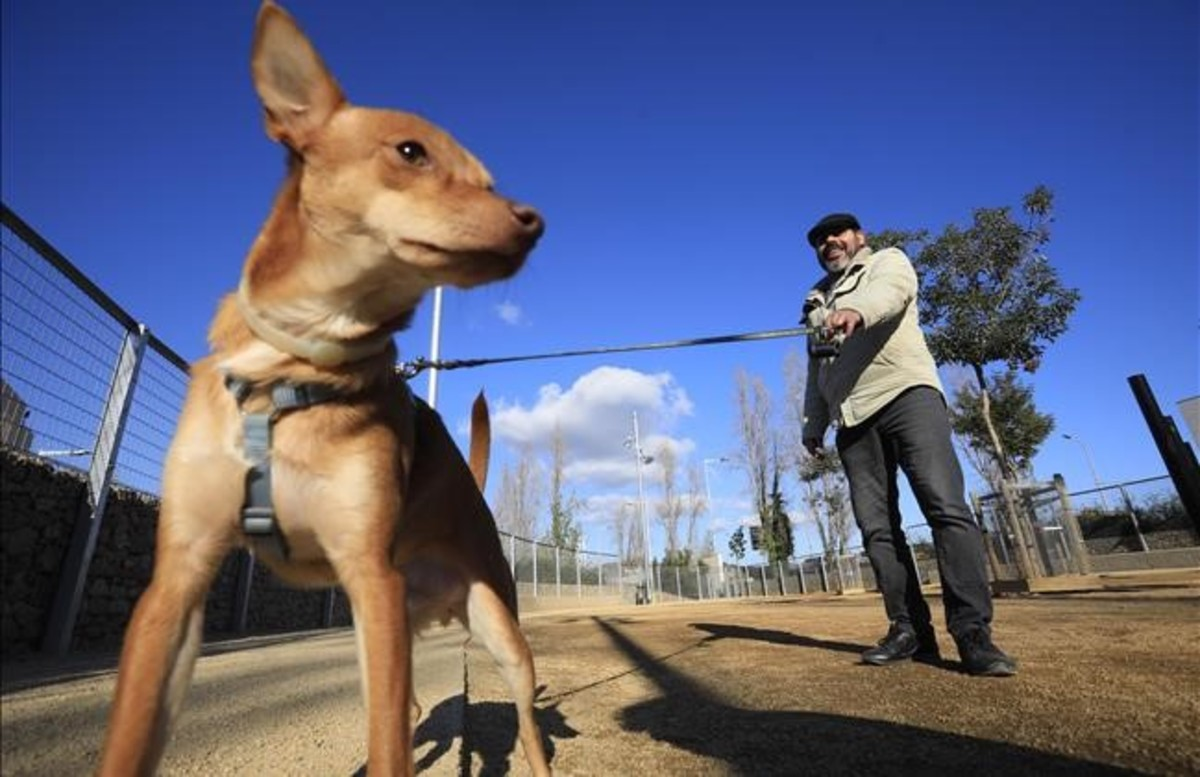 Un hombre paseando a su perro en una imagen de archivo