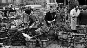 Vendedores de verduras en el Mercat del Born, en 1964, cuando era la plaza mayorista de Barcelona.