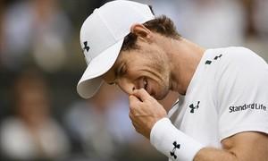 Murray se desespera durante el partido contra Querrey en Wimbledon..