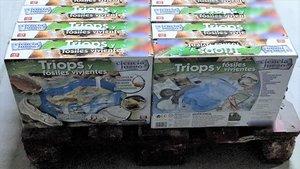 Incautación por parte de la Guardia Civil de cajas del juegoque contiene Triops.
