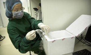 Un científic xinès assegura haver modificat per primera vegada els gens de nadons