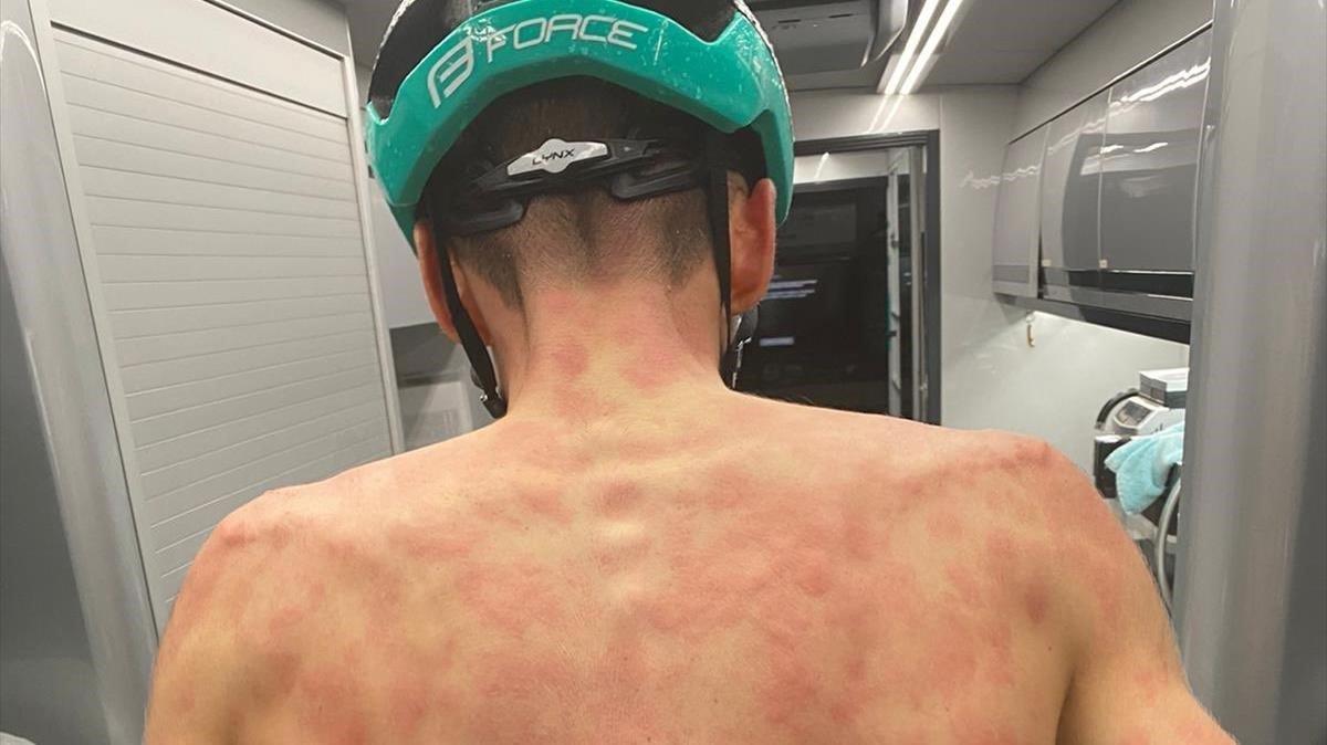 La espalda del ciclista Máxime Chevalier.