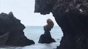 ¿Què són aquestes estranyes criatures aparegudes en una platja de Tailàndia?