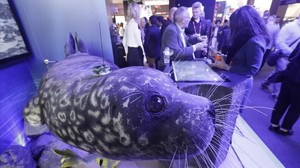 Una foca en el estand Innovation City del Mobile World Congress.