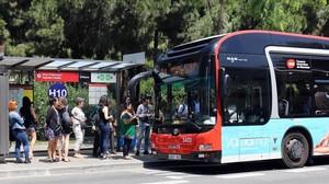 Un grupo de usuarios aguarda en la parada la llegada del autobús.