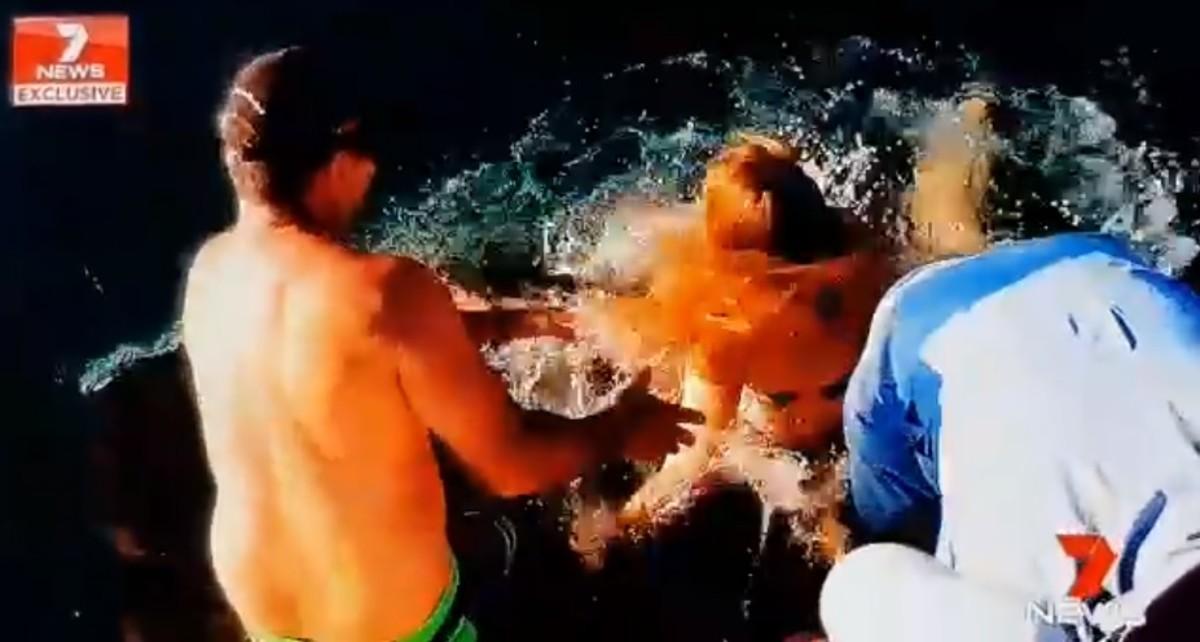 Da de comer a un tiburón y este la arrastra al agua