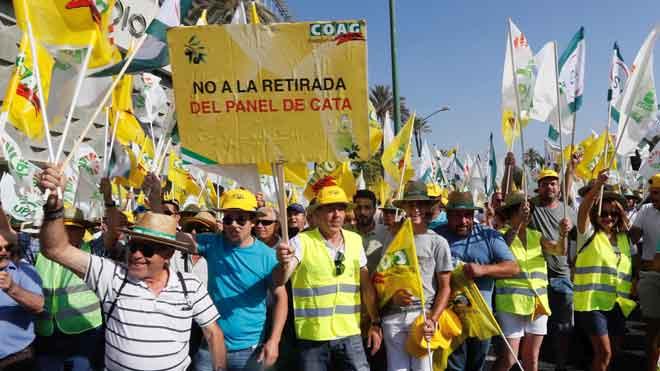 Protesta de olivareros en Sevilla por el precio del aceite de oliva.
