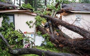Una casa aplastada por árboles arrancados por el huracán, en Columbia.