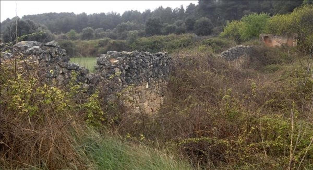 Ruinas del Mas Pou del Baró, en Gandesa (Terra Alta), donde se ha confirmadoque hay una fosa de la guerra civil.