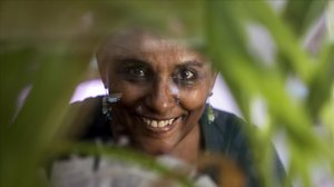 Segenet Kelemu: la señora de las moscas