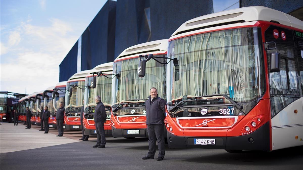 Parte de la nueva flota de autobuses de TMB.