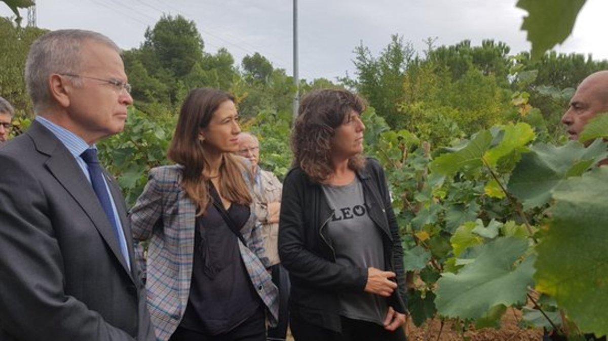 La consellera de Agricultura de la Generalitat, Teresa Jordà; la alcaldesa de Santa Coloma, Núria Parlon, y el rector de la UB, Joan Elias, visitan la Vinya d'en Sabater.