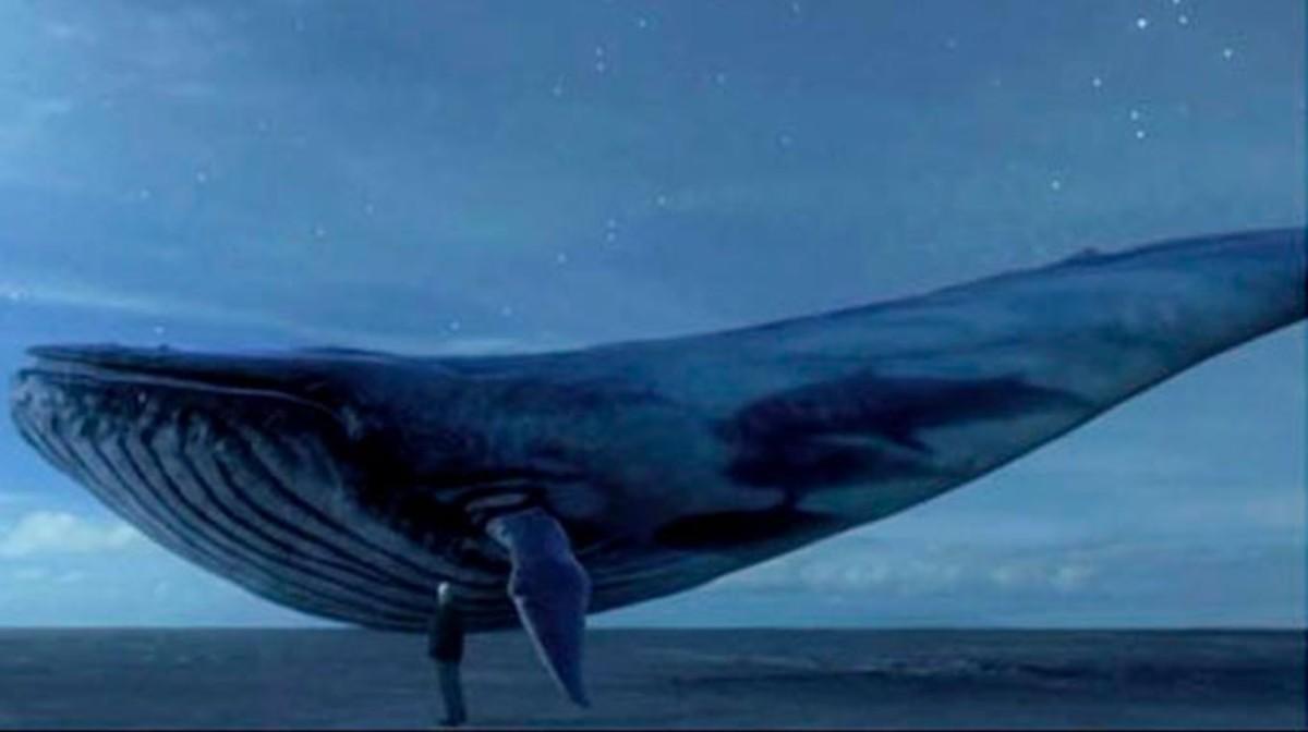 La imagen de una ballena azul que aparece en las cuentas de Facebook o Instagram de algunos participantes en el reto suicida.