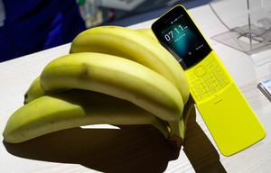 El nuevo Nokia 8110.