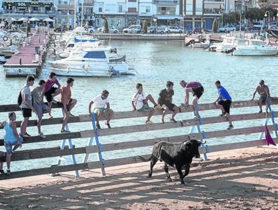 Un toro se pasea por la plaza situada en la playa de L'Ampolla ante la mirada de jóvenes asistentes.