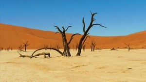 El Valle de la Muerte de Namibia.