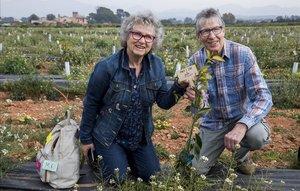 Meike y Jens Widderich, en unafinca valenciana que funciona con micromecenazgo.
