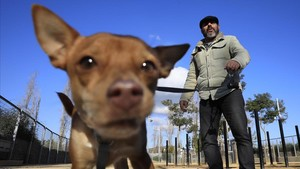 jcarbo41573808 barcelona 12 01 2018 area de recreo para perros en nou barri180115132624