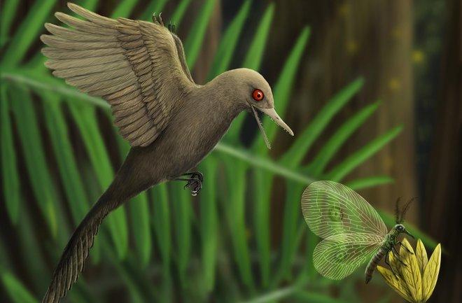 Hallaron un mini dinosaurio atrapado en ámbar hace ¡100 millones de años!