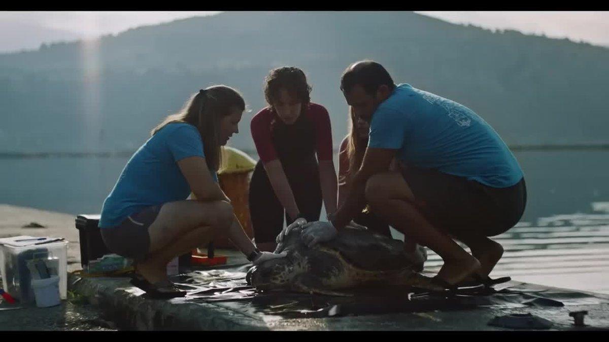 """Estrella Damm presenta """"Amantes"""", la segunda parte de su campaña Mediterráneamente, este año centrada en concienciar a la sociedad sobre la necesidad de proteger el mar Mediterráneo."""