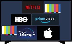 Netflix i altres subscripcions digitals