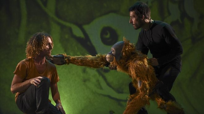 'Jojó. Història d'un orangutan'.