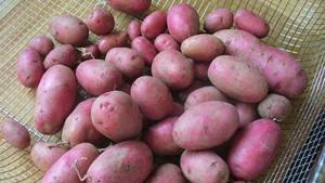 Patatas.