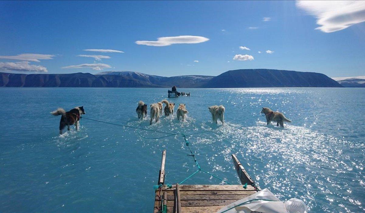 Espectacular imagen de unos perros tirando de un trineo sobre el agua en Groenlandia.