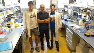 Jordi Pujols, Salvador Ventura y Samuel Peña, investigadores responsables de este nuevo hallazgo