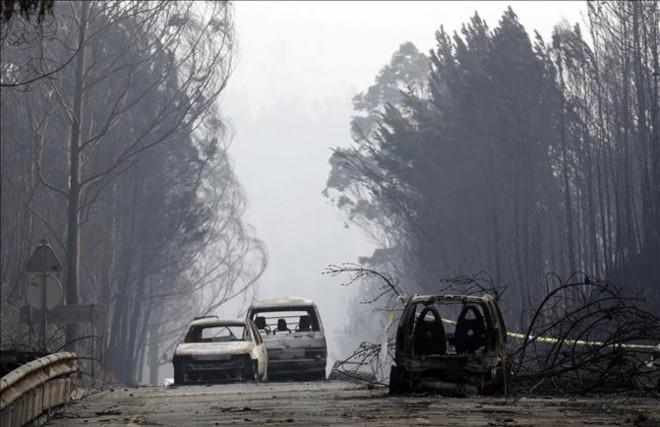 Imatges de l'incendi forestal a Portugal