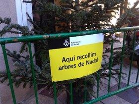 Punto de recogida de árboles de Navidad en Mataró.