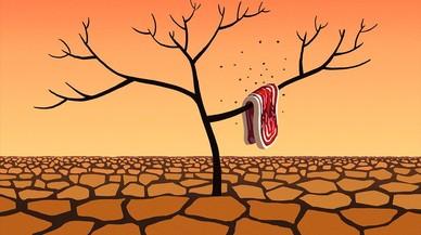 ¿Un impuesto a las carnes rojas para disminuir su consumo?