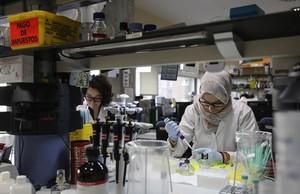 Laboratorio del Hospital Clínic donde se trabaja en la vacuna contra la malaria.