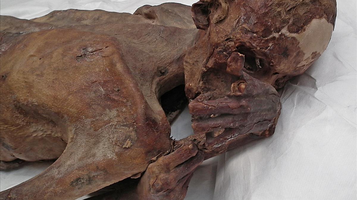 La momia masculina conocida como 'Hombre Gebelein A'se exhibe en el British Museum de Londres.