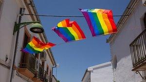 Banderolas multicolor colocadas por los vecinos en Villanueva de Algaidas (Málaga), donde el Ayuntamiento ha retirado la enseña LGTBI que venía luciendo desde hace tres años por el día del Orgullo.