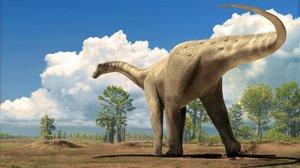 Els primers dinosaures van posar ous de closca tova, segons un estudi