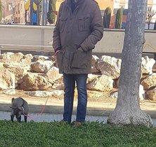 Multat un home que passejava una cabra per evitar el confinament pel coronavirus a Palafrugell