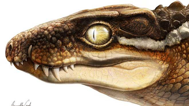 Un fósil robado permite descubrir una nueva especie de cocodrilo en los Pirineos. En la ilustración, recreación de cómo sería el cocodrilo si estuviera vivo.
