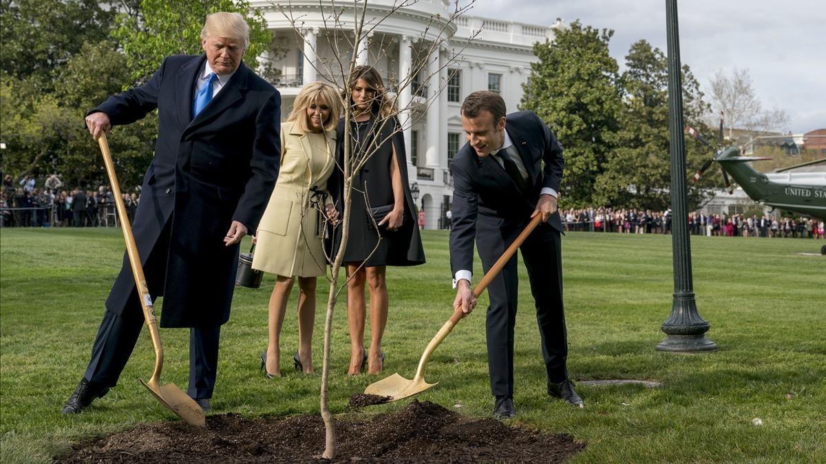 El presidenteDonald Trump y su homólogo francés, Emmanuel Macron, plantan un árbol ante la presencia de sus esposas.