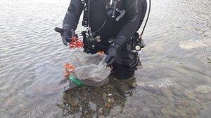 Enxampats uns furtius que amagaven prop de dos quilos de coral vermell al Cap de Creus   Vídeo