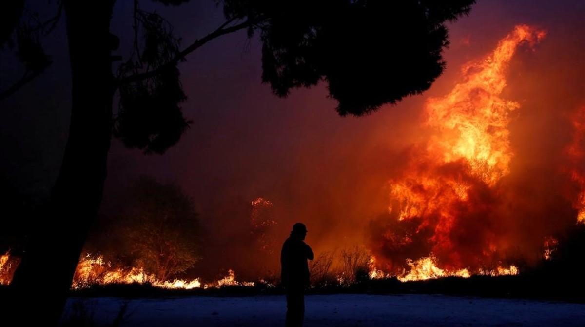 Los incendios en Grecia ya dejaron más de 50 muertos - Mundo