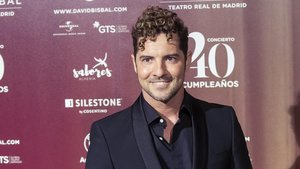 David Bisbal: «Elena Tablada menteix»