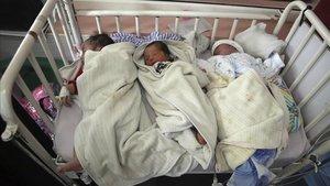 Tres de los recién nacidos rescatados de la maternidad atacada en Kabul esta semana.