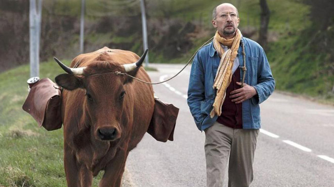 'La vaca': 'road movie' campestre