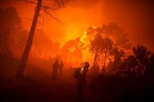 La Armada de Colombia señaló en un comunicado que los incendios se intensificaron entre julio y agosto por la temporada de calor y los fuertes vientos.