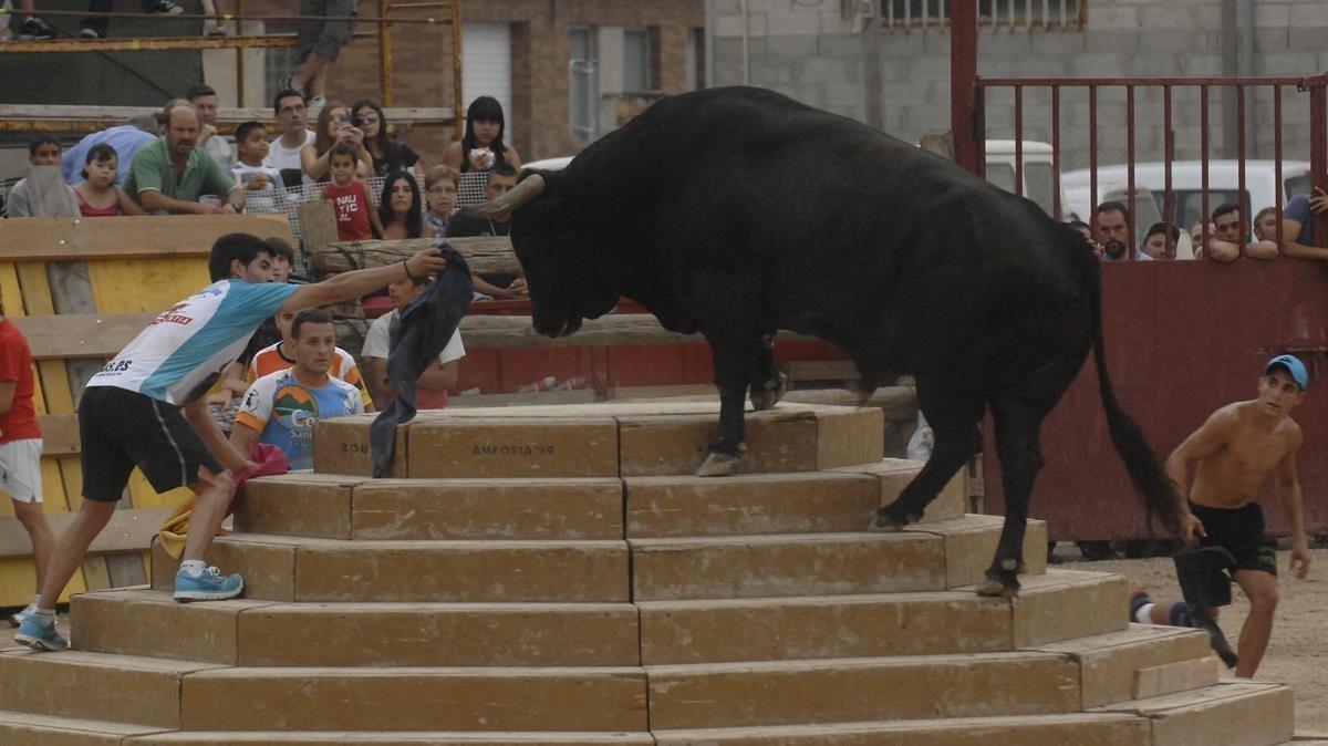 """El ministre de Cultura veu tant """"maltractament"""" en els correbous com en els toros"""