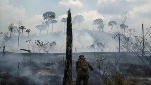 Los bomberos trabajan en la extinción de los incendios en la selva amazónica, en una imagen de archivo