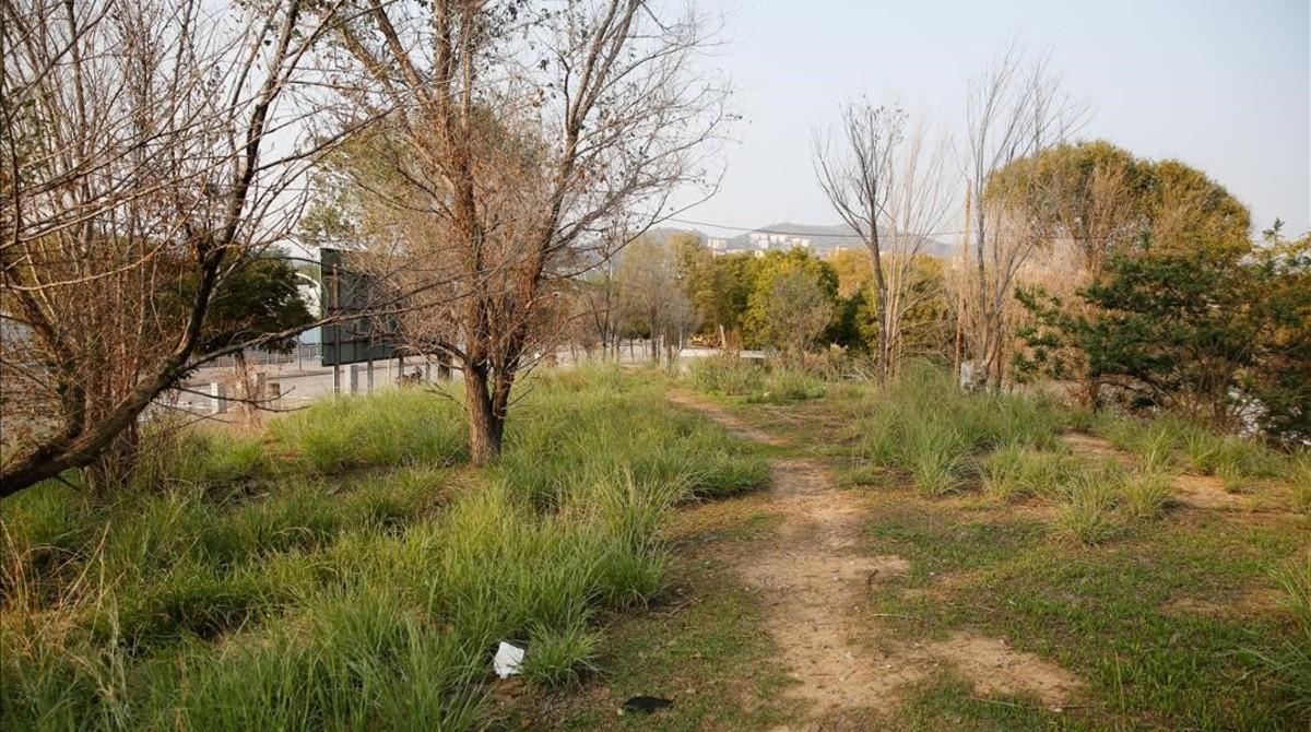 Espacio previsto para la nueva área para perros de Sant Andreu.